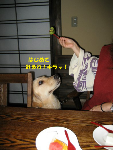 20120616-3.jpg