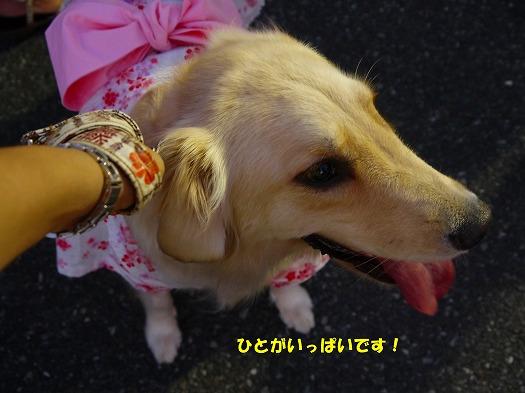 20120808(9).jpg