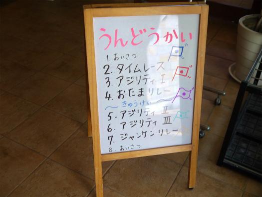 20121029-1-1-1 (2)