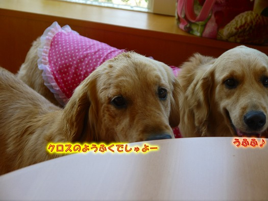 9_20120701074055.jpg