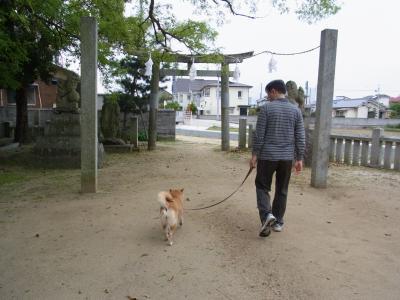 さぁ、お散歩再開!