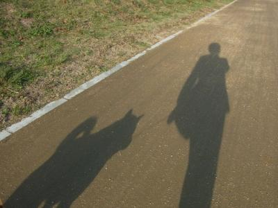 影も仲良し♪