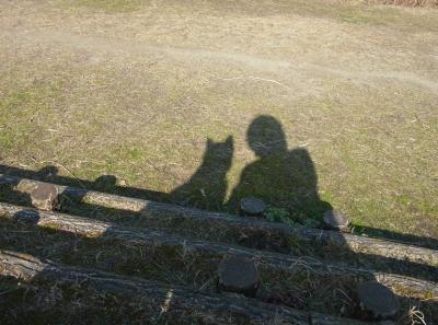 影も仲良し