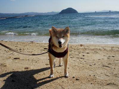 海って楽しいね!