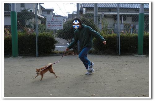 走れ!走れ!