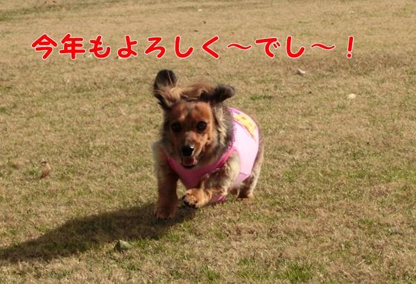 0201_20130102164002.jpg