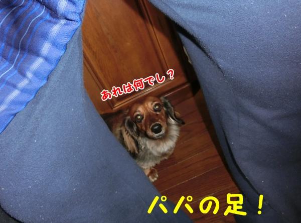 1201_20130112221036.jpg