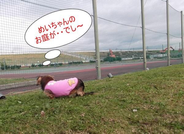1501_20121115172158.jpg