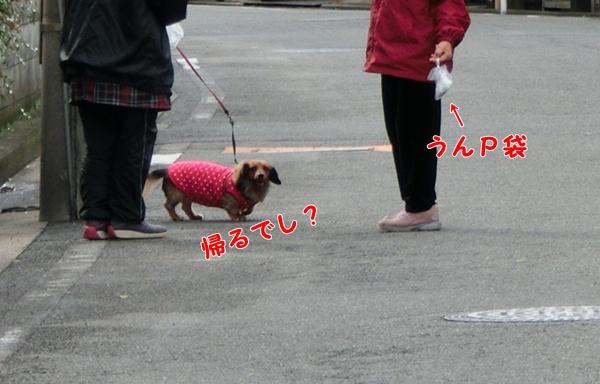 1603_20121216202612.jpg