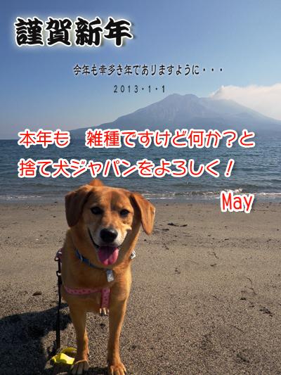 2013-blog.jpg