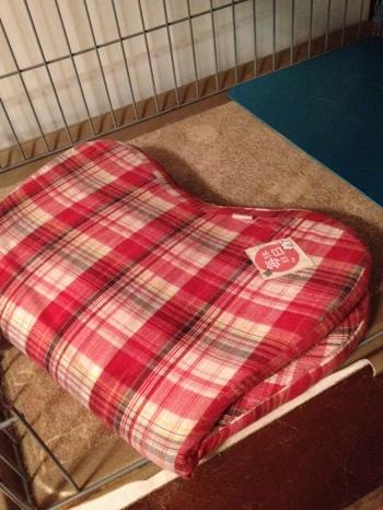 fc2blog_20120913210843f96.jpg