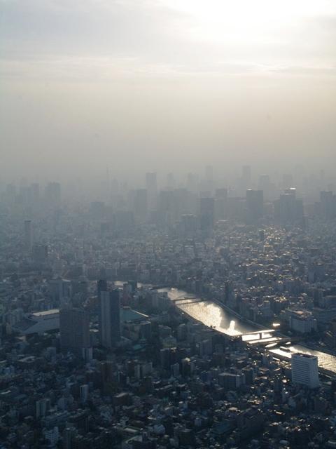 20140201東京スカイツリー08
