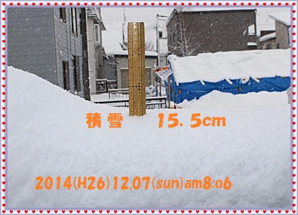 IMG_5909.jpg