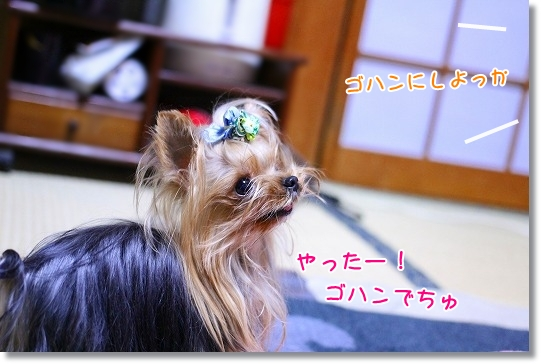 IMG_9842L.jpg