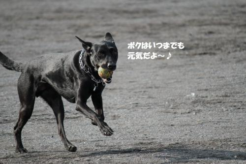 IMG_5544.jpg
