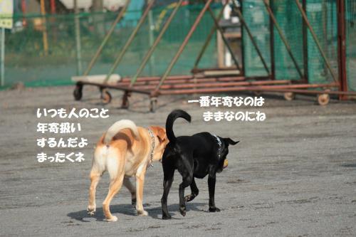 IMG_5563.jpg