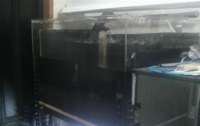 水槽崩壊2