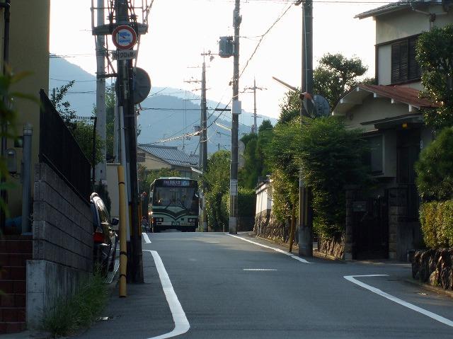 市バス01
