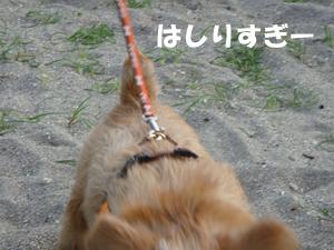 2012-05-06_03.jpg