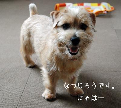 2012-06-24_01.jpg