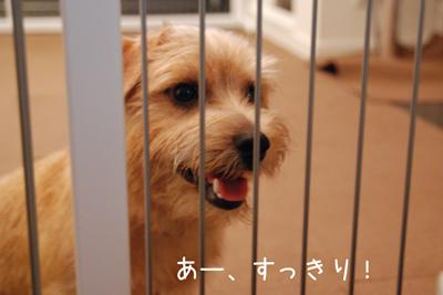 2012-06-28_04.jpg