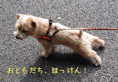 2012-07-01_04.jpg