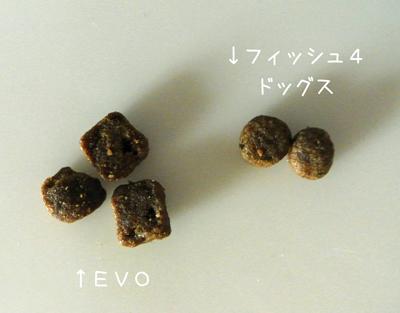 2012-09-01_02.jpg