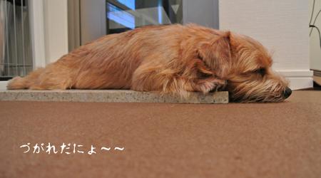 2012-09-02_06.jpg