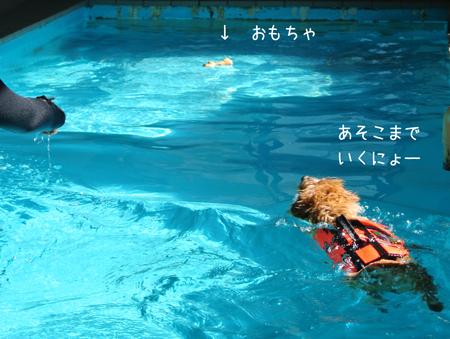 2012-09-17_08.jpg