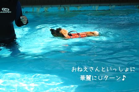2012-09-17_09.jpg