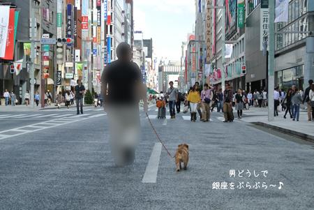 2012-10-08_01.jpg