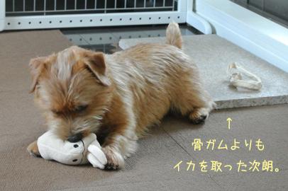 2012-10-10_03.jpg