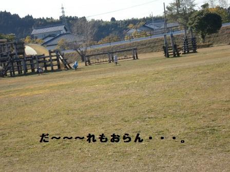 CIMG4125.jpg