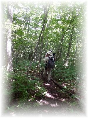 平成の森2