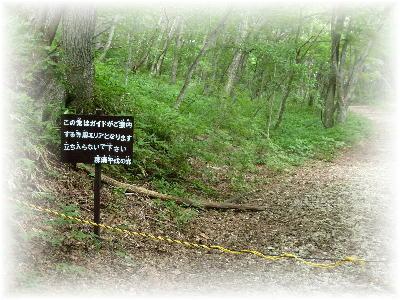 平成の森3