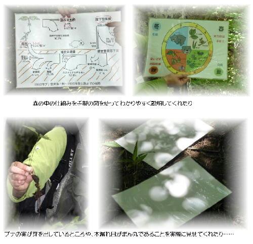平成の森4
