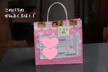 03_20121127150014.jpg