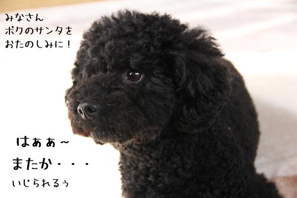 09_20121217002157.jpg