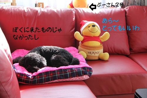 10_20130120225455.jpg