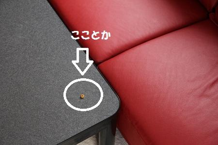 11_20130228104917.jpg