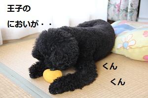 12_20121009231310.jpg