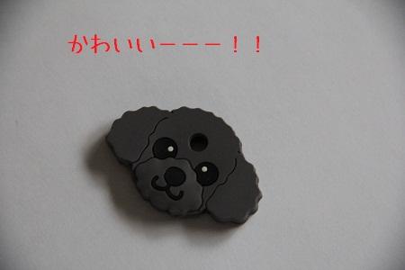 12_20121030211946.jpg