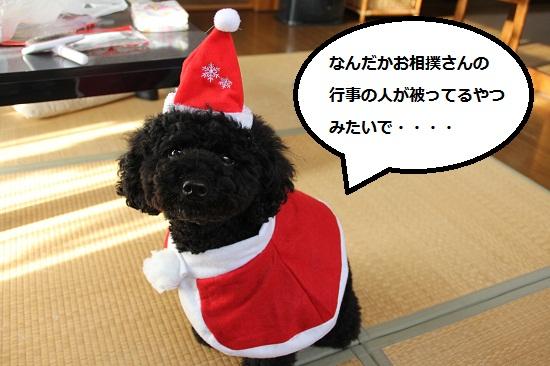 12_20121218220533.jpg