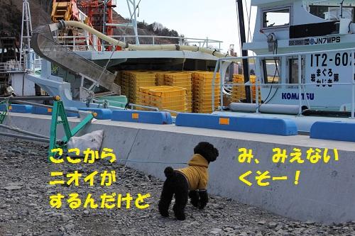 12_20130306003539.jpg