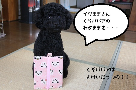 14_20121127150130.jpg