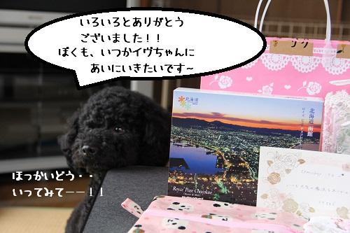 15_20121127150130.jpg