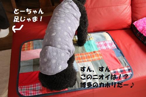 15_20130223151645.jpg