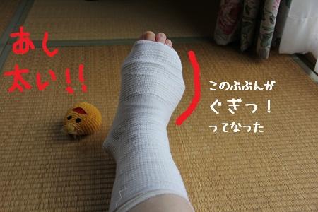 20_20121127233401.jpg