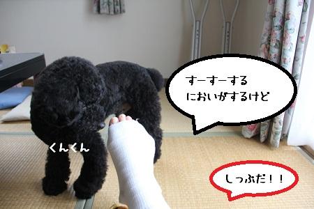 21_20121127233449.jpg