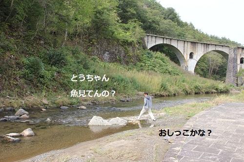 22_20121010232248.jpg